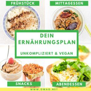 Veganer Ernährungsplan-1-Tages-Ernährungsplan-vegan-pflanzlich